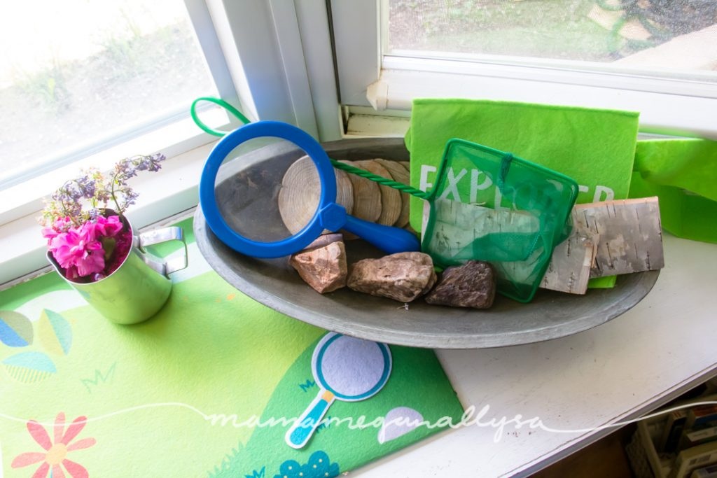 the nature discovery tray from this weeks toy rotation with some wood, rocks and bark as well as a net, magnifying glass and small bag.