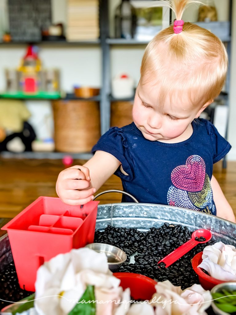 Toddler transferring a handful of black beans into a red plastic gardening container.