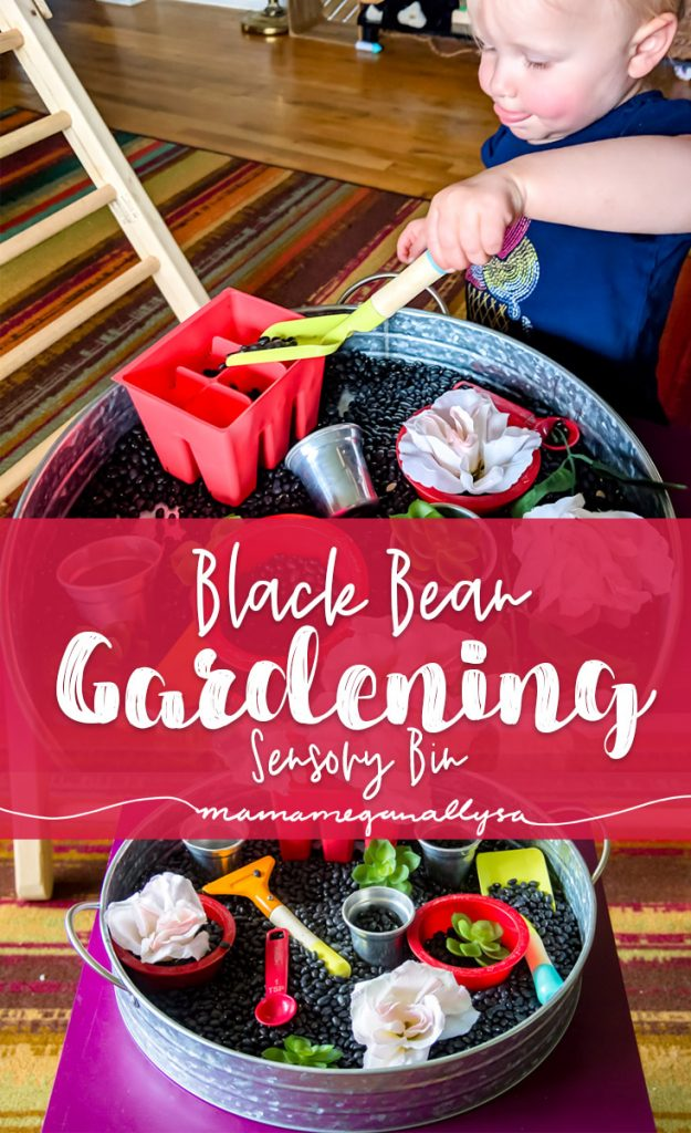 Title card for black bean garden sensory bin post. Showing toddler use play shovel and contents of bin