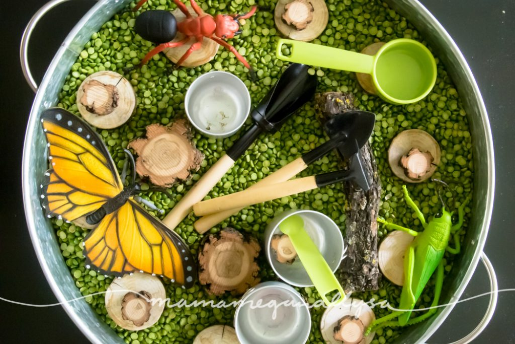 a top down view of the split peas sensory bin and all the tools and extras including wood slices, large bugs, gardening tools and mini metal pots