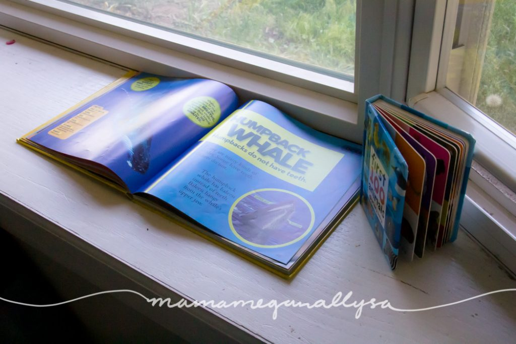 a large nonfiction books about animals on the windowsill
