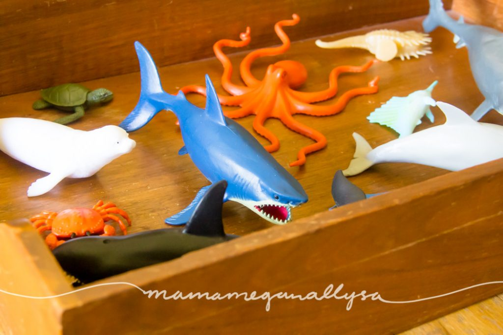 close up of random ocean animals of all sizes layed on a wooden tray