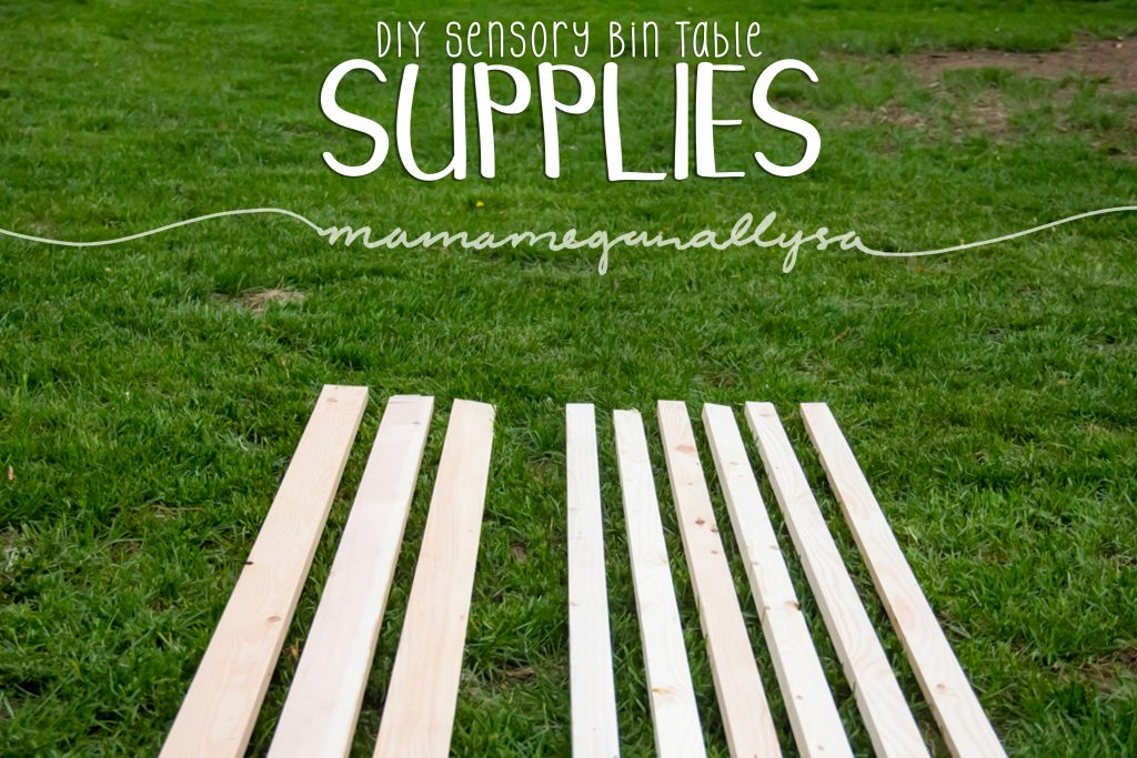 title card for our DIY sensory bin table supplies