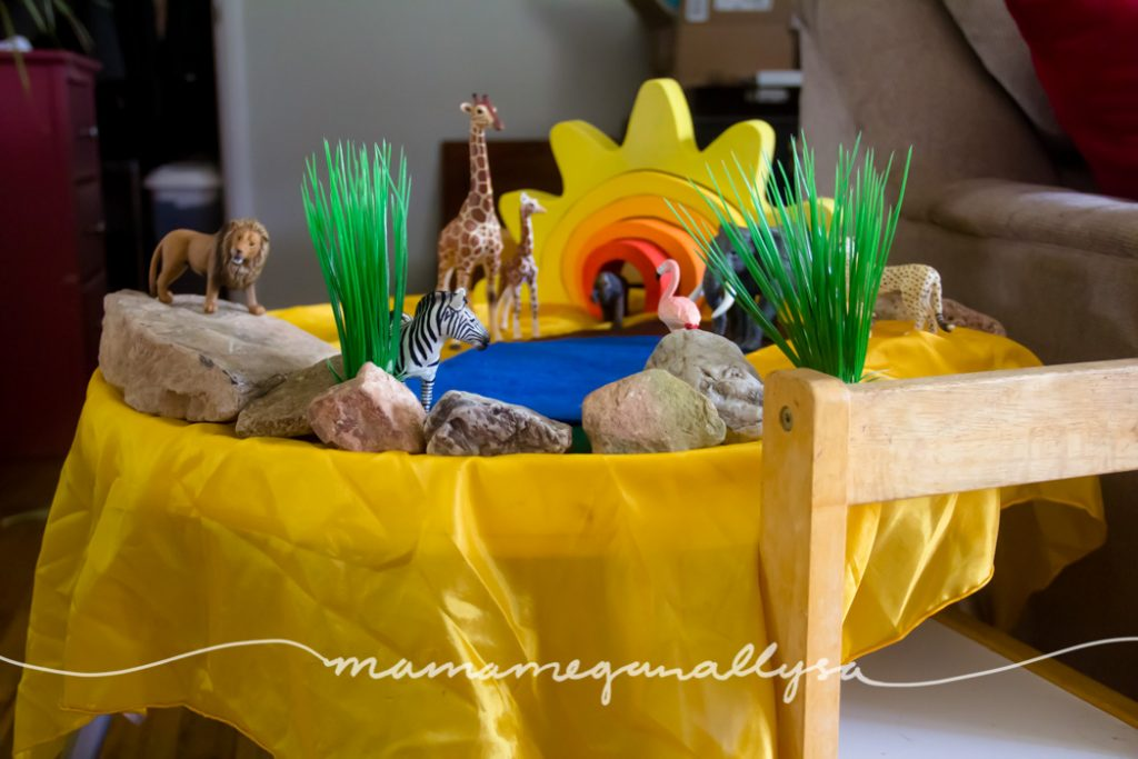 The additions of rocks and plants really bring our aftican grasslands small world to life