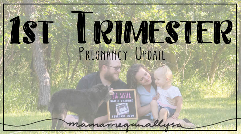 My 1st Trimester update is more so for me than anyone else, but on the off chance you want a peek into how I was feeling read on!
