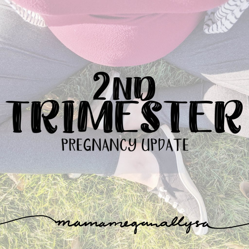 My second pregnancy has been fairly easy, with the exception of finding pants...find out what I mean and other thoughts from my 2nd trimester!