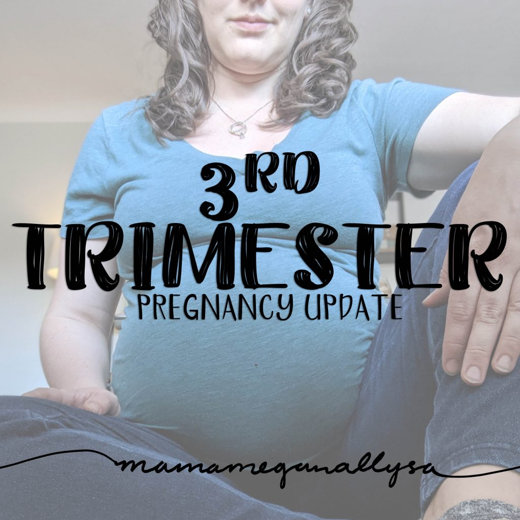 The 3rd trimester pregnancy update covers new aches and pains as well as some nesting!