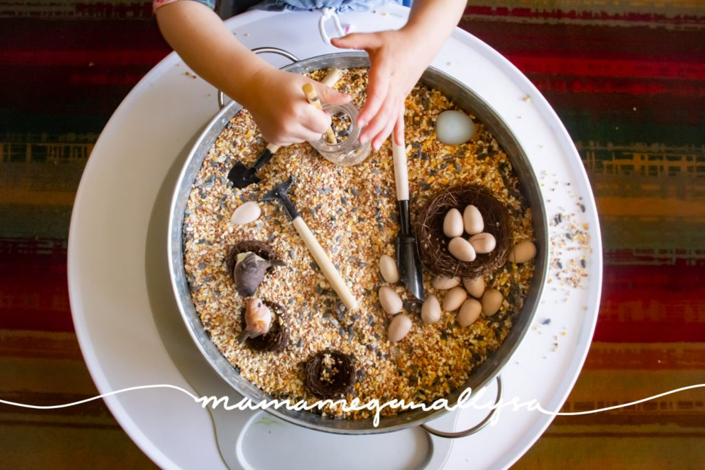 We added some small shovels, fake nests and wooden eggs to our birdseed sensory bin