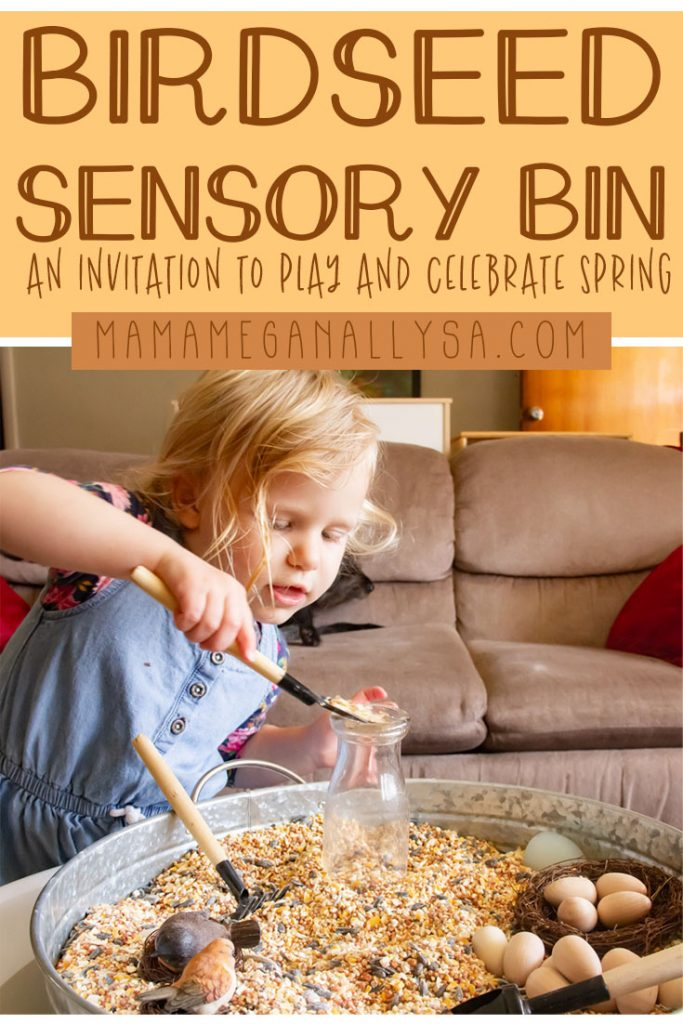 A birdseed sensory bin is a great way to celebrate spring as well as spark some discussion and learning about birds!