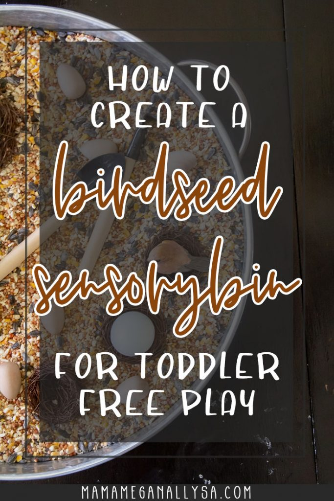All you need for a birdseed sensory bin is some eggs, fake nests, bird figures and some then some sensory bin tools