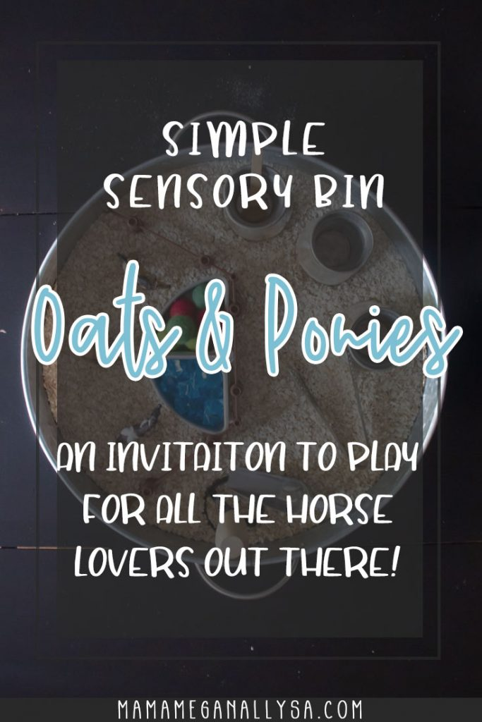 and oatmeal and pony sensory bin set up