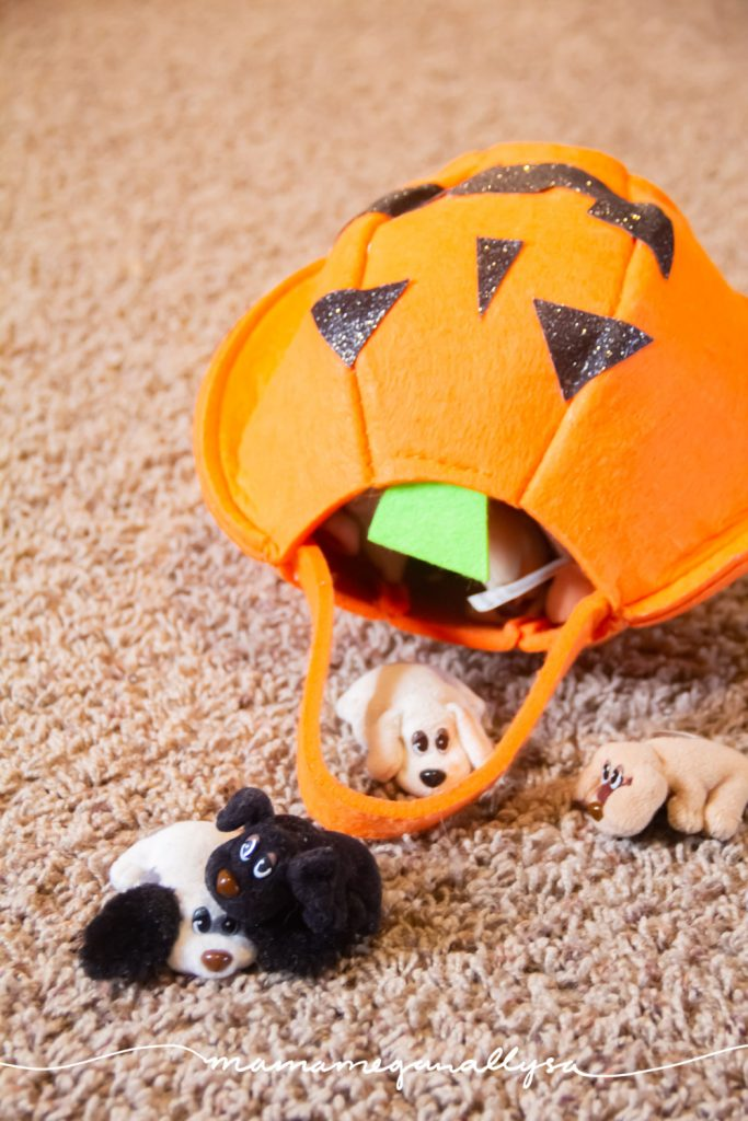 mini pound puppies strait from the 90's tucked into a pumpkin for safe keeping