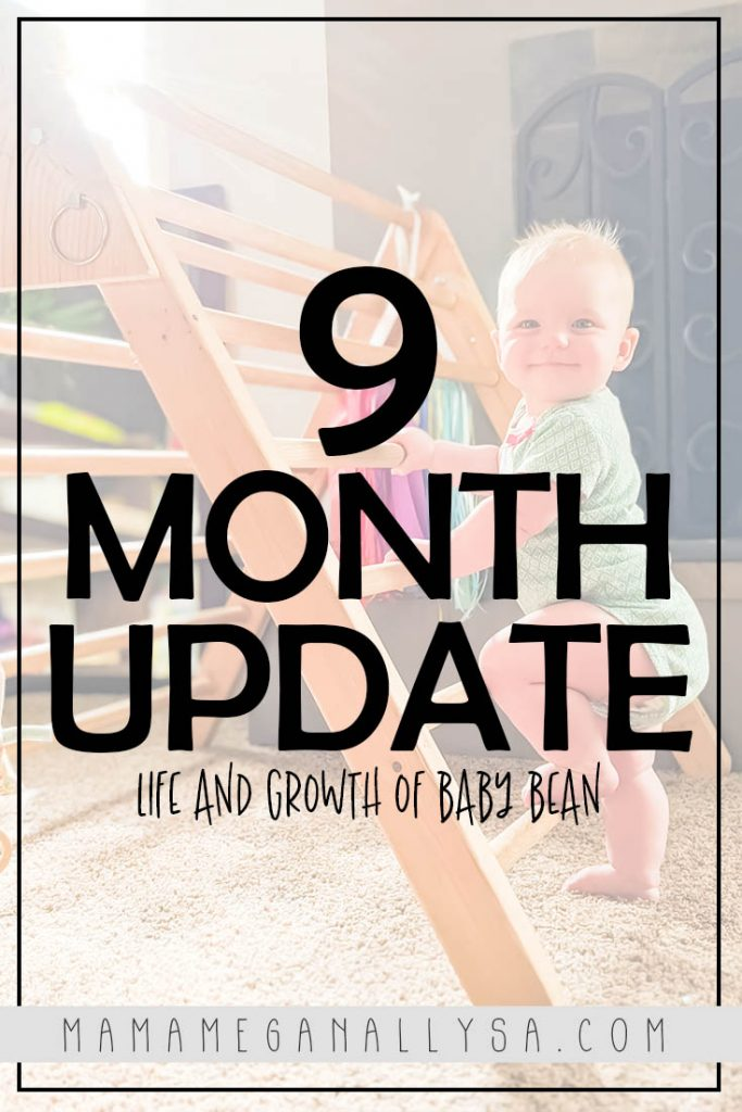 Check out the Life and Growth of Baby Bean and the 6-9 Month Milestones that we hit.