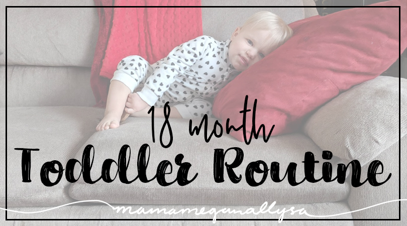 18 month old toddler routine