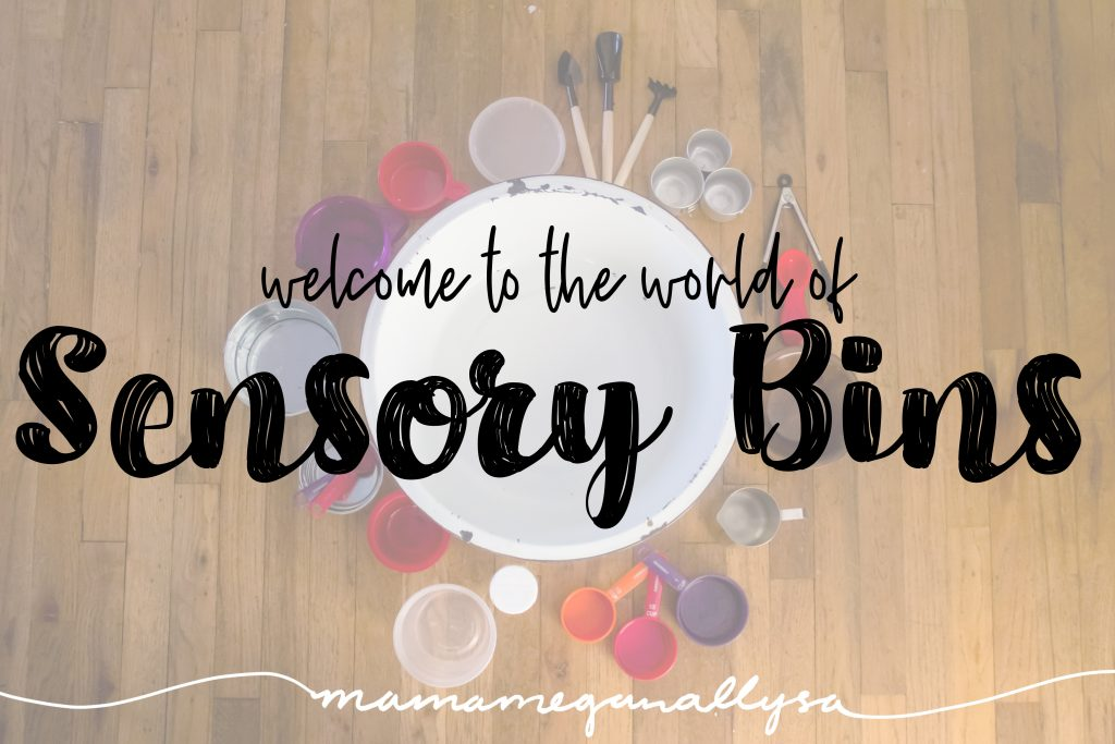 a title card for an intoduction to sensory bins showing a collection of tools used in sensory bins; from cups to canisters to spoons and shovels