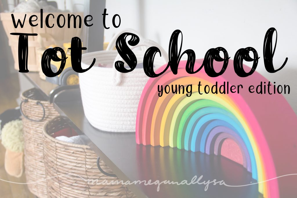 Welcome to Tot School : a breakdown of how I plan to use Tot School with my 18 month old