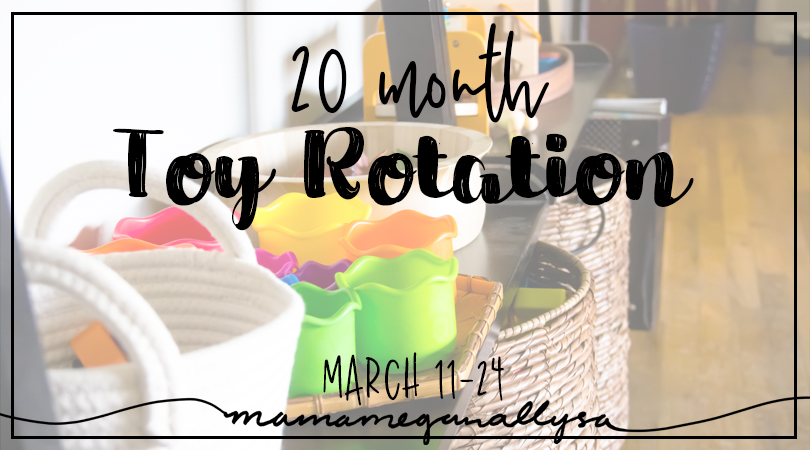 20 month toy rotation title card