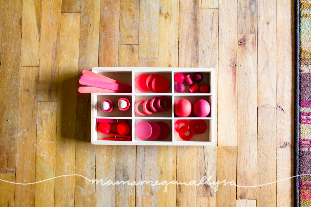 a top down view of red wooden loose parts toys in a divided tray