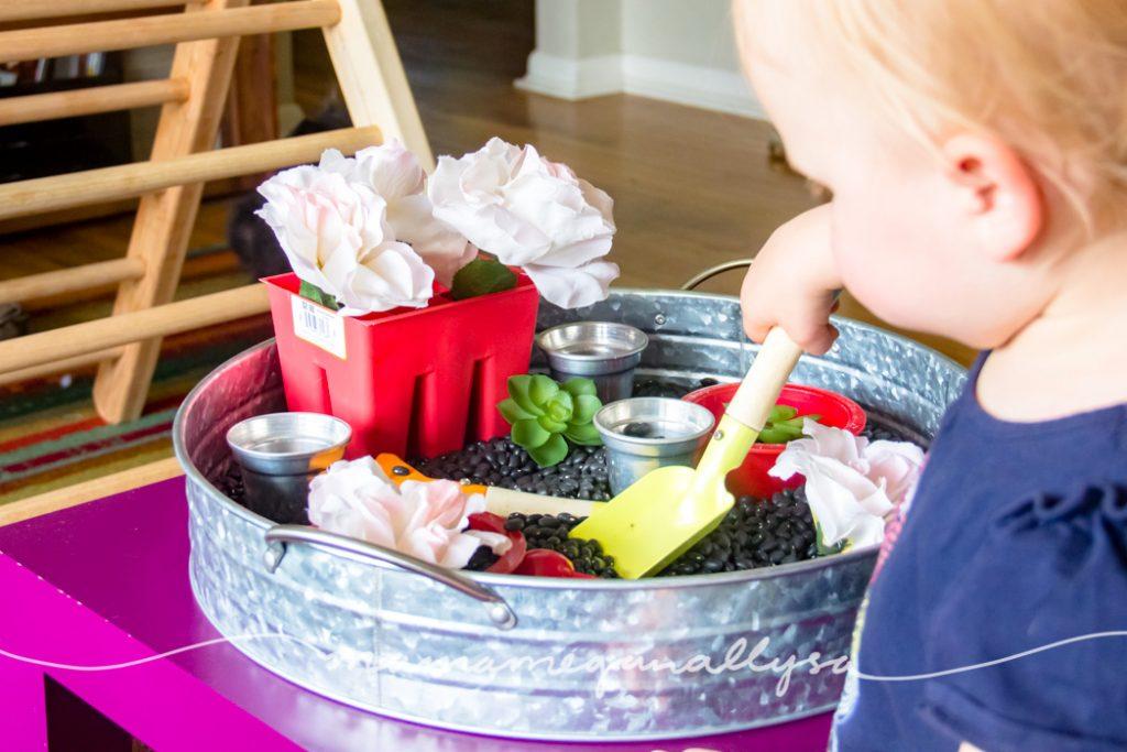 A toddler shoveling black beans garden sensory bin