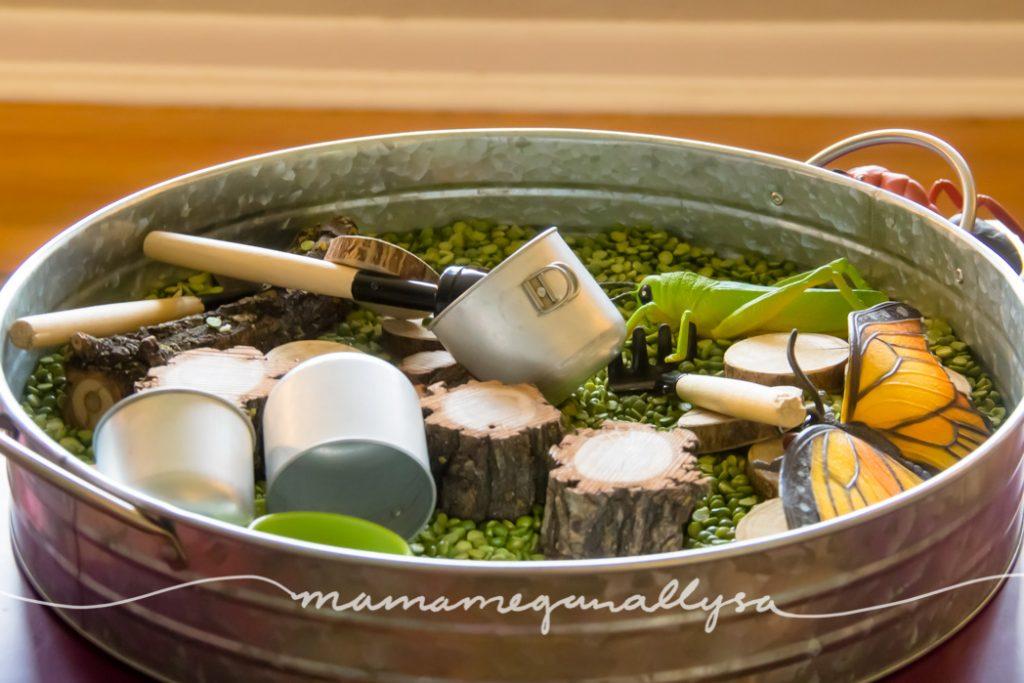 a Split Peas sensory bin with wood slices, fake bugs and mini metal pots