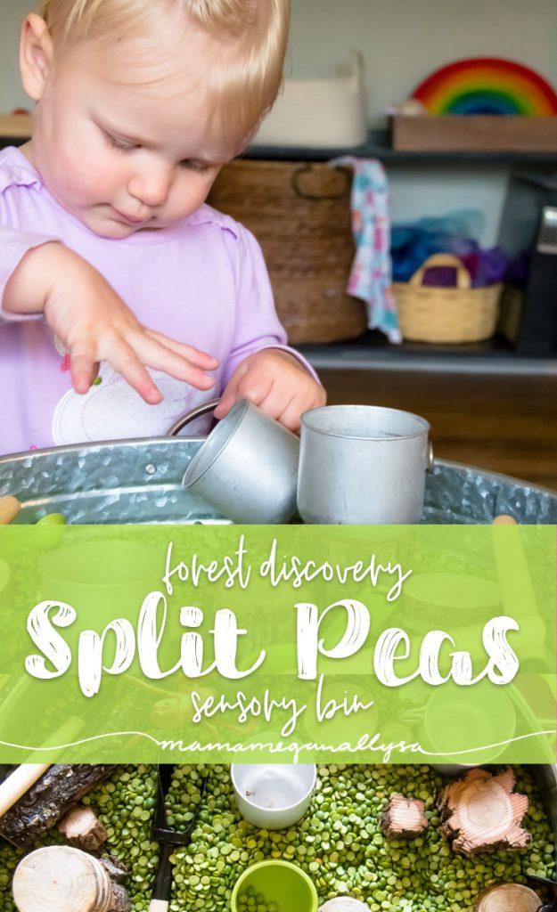 Split Peas Forest Discovery Sensory Bin