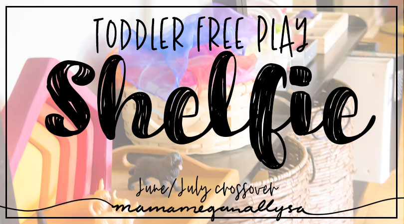 Toddler Toy Self : Free play toy rotation for July title card