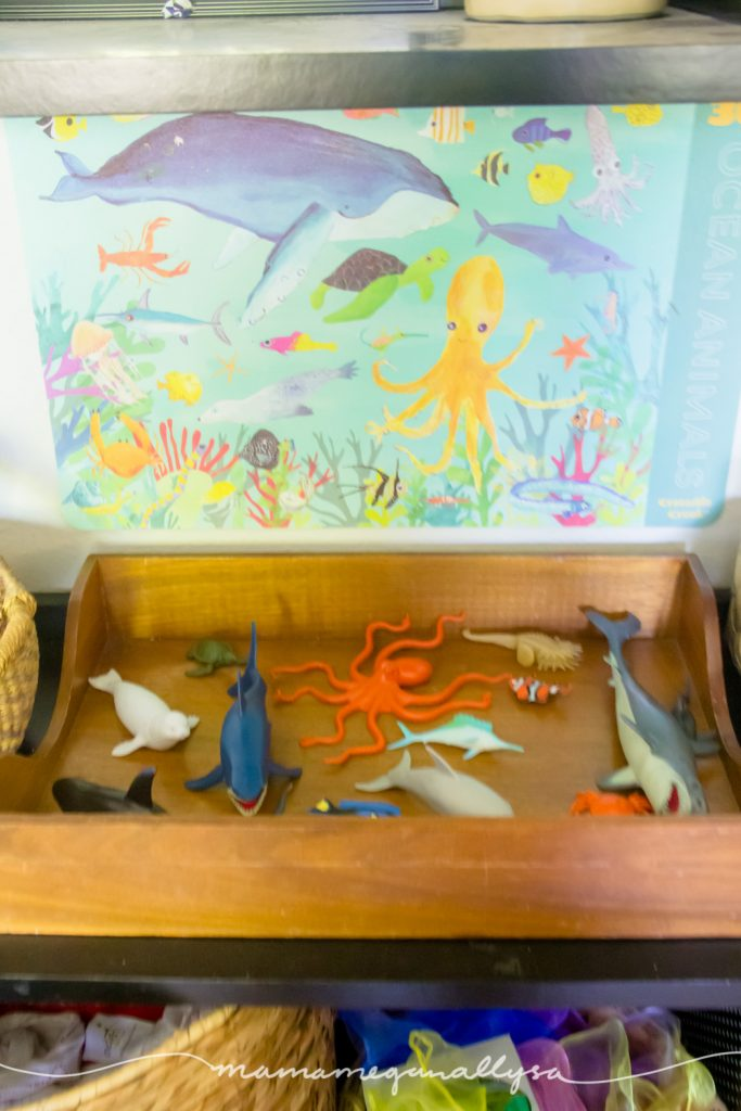 a ocean art placemat taped to the wall on the back of the shelf behind the tray of ocean animals