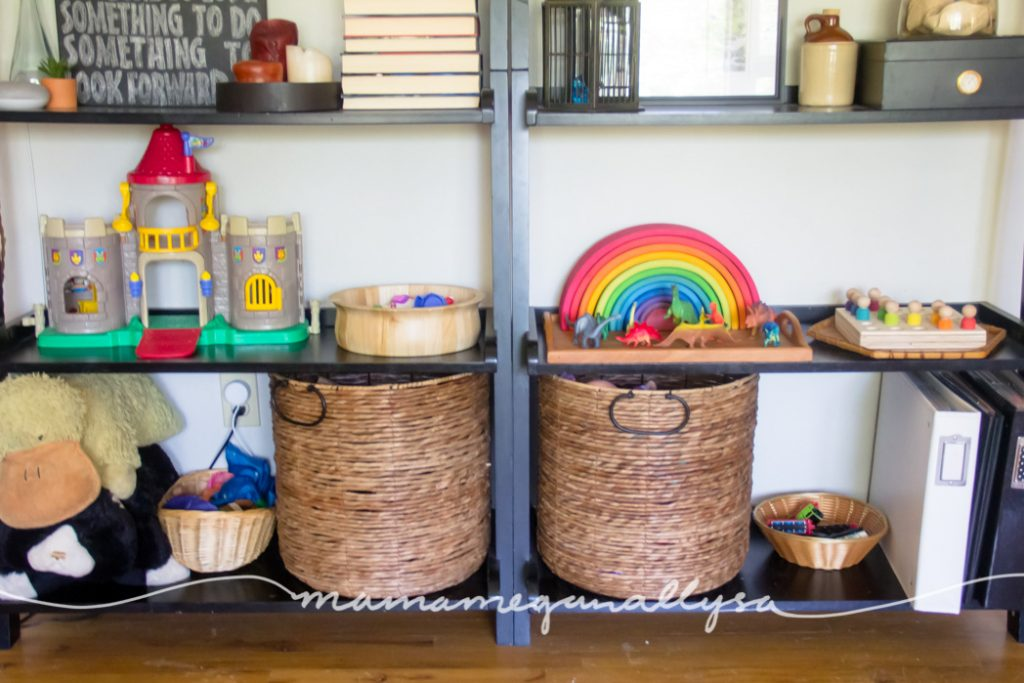 A closer view of the liing room shelves in our play space