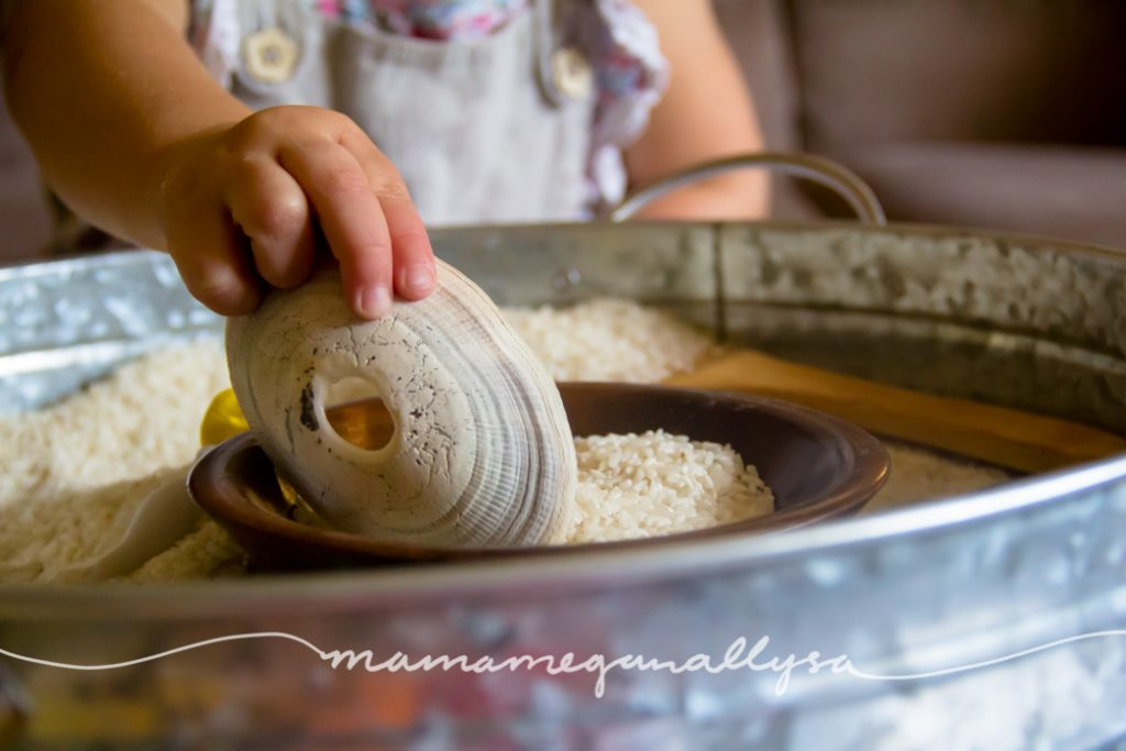 I really enjoyed scooping the rice with this particular shell. It even has a hole in the center that works as a funnel!