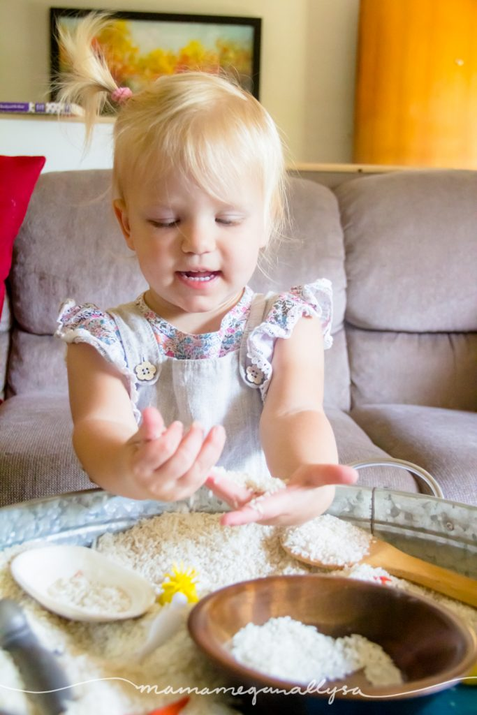 Play in a simple rice sensory bin is always fun, even more so when you add animals!