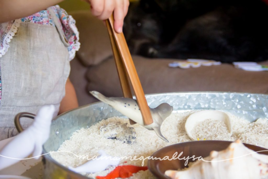 We spent a fair amount of time using the tongs to pick up the seals in our beach themed rice sensory bin