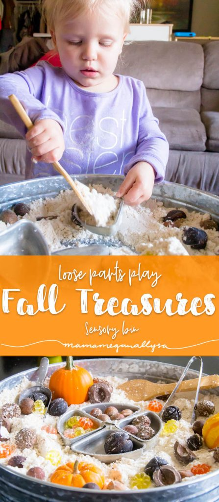 I wanted our fall sensory bin to reflect her current interests and that would be collect natural treasures and baking! So some nuts and acorns in a cloud dough base seem to fit the bill just right!