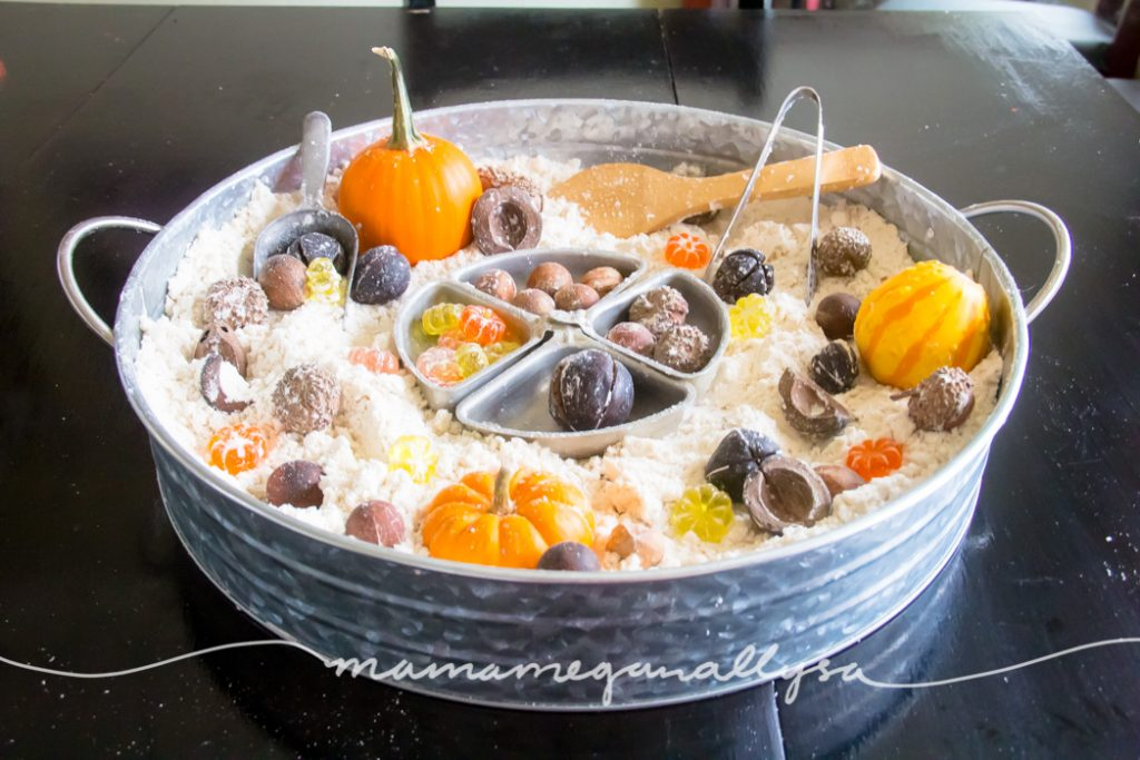 Our Fall sensory bin is fulled with nuts, pumpkins, and acorns in a cloud dough base with some great fine motor tools for added benefit!