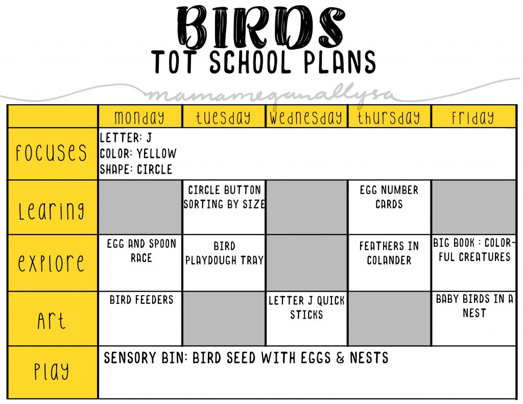 Our Bird tot school plans will talk about eggs, baby birds and what birds like to eat!