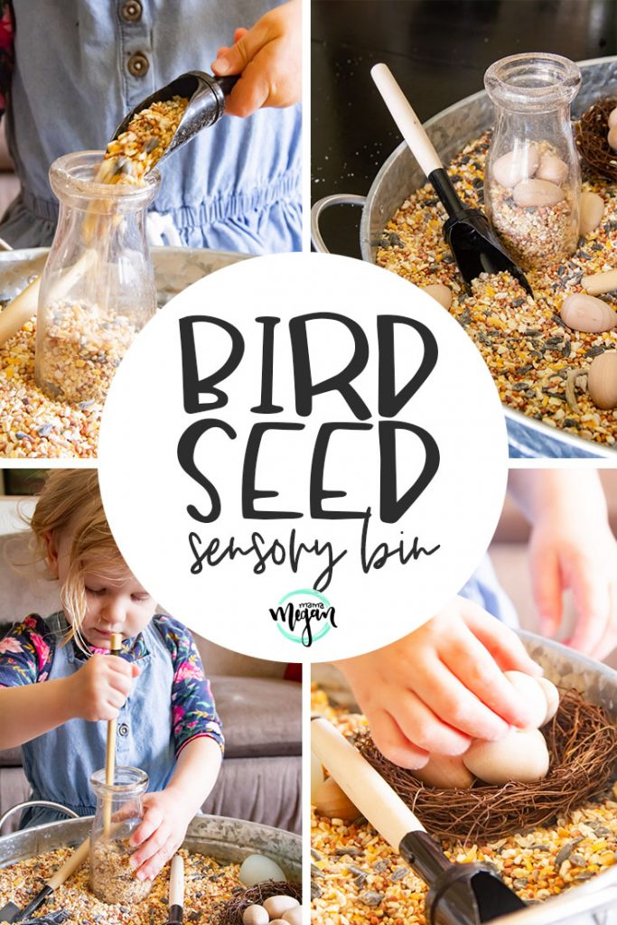 A birdseed sensory bin is a great springtime toddler invitation to explore