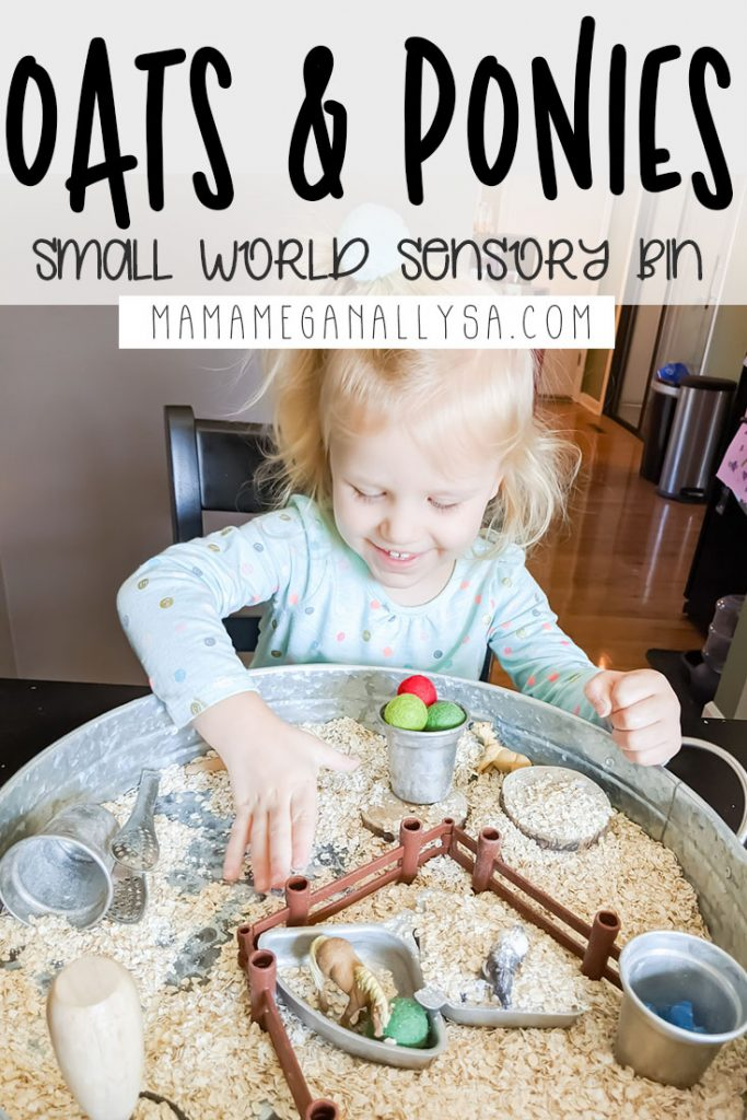 A Ponies & Oatmeal sensory bin is a great way to spark some small world play and some sensory exploration as well!