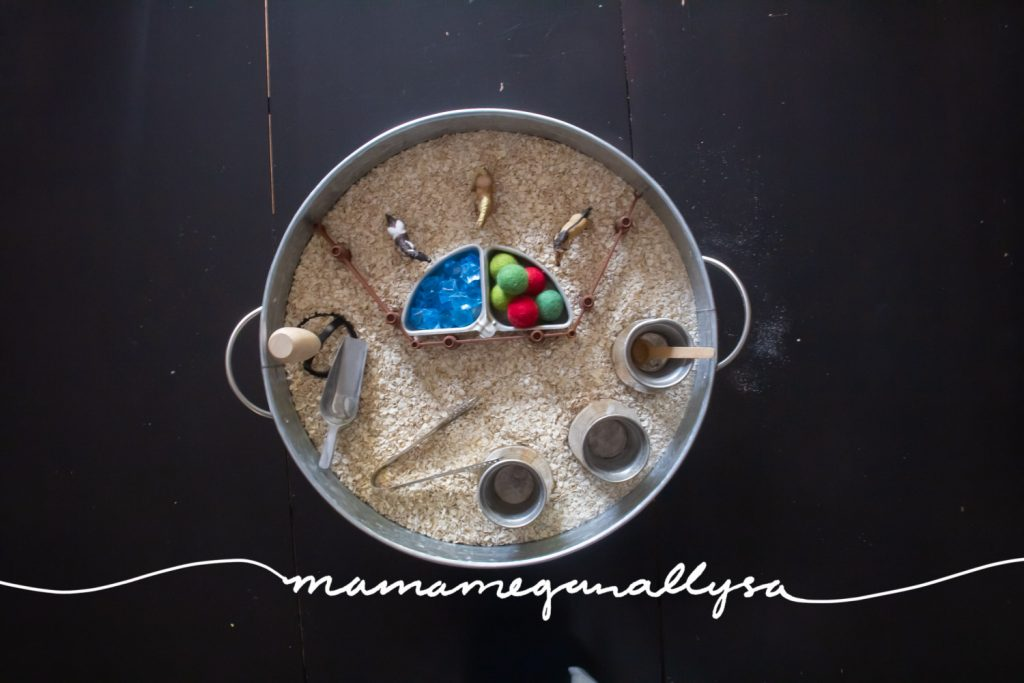A top down view of what our Ponies and Oatmeal sensory bin small world looked like.