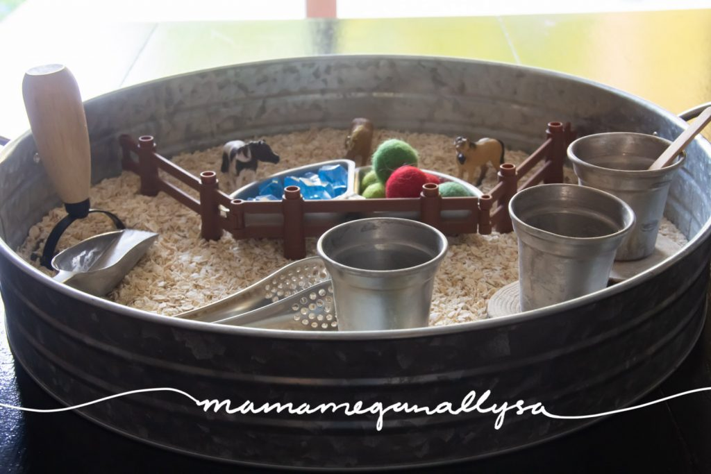 With one side of the Ponies and Oatmeal sensory bin being the corral with the apples and water loose parts, the other side is left open to interpretation and exploration!