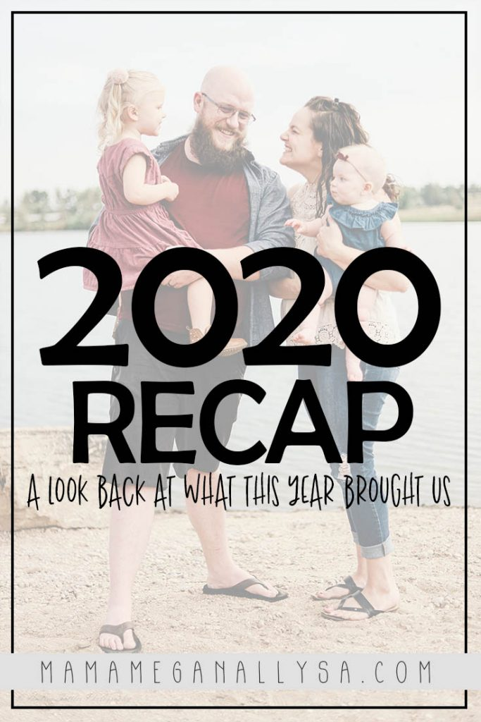 a pin with the text 2020 recap - a look back at what this year brought us with a family portrait in the background  with everyone smiling at each other