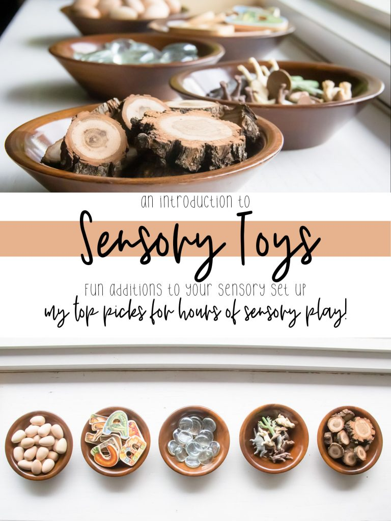 a pin showing some examples of toys and loose parts for sensory bins