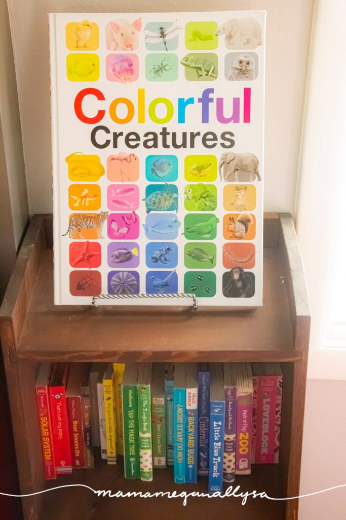 A rainbow of board books on a wooden bookshelf with colorful creatures book displayed on top